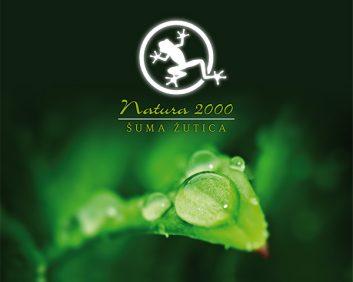 brosura-suma-zutica